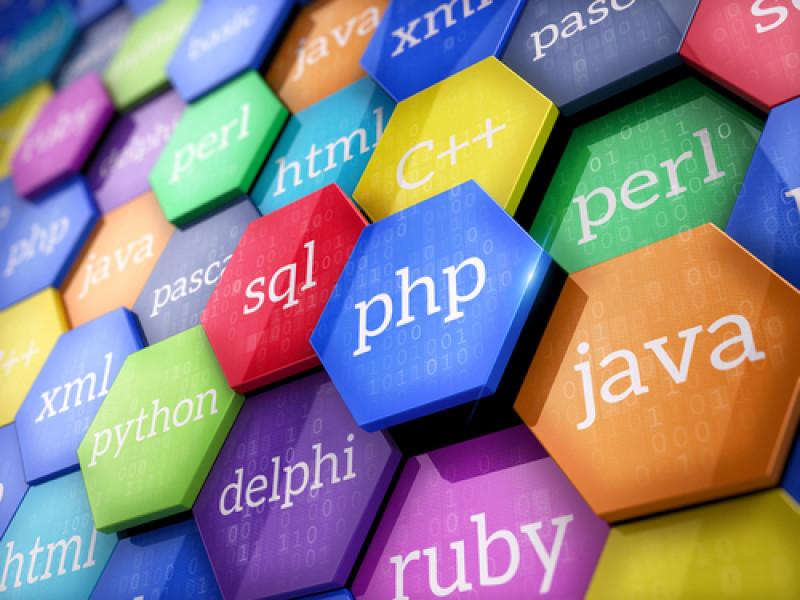 RoboGarden | Programming languages in the highest demand
