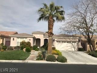 3288 Rabbit Brush CT
