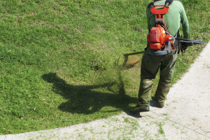 lawn service yard care weed eating leaf blower worker gardener landscaper rental home lawn care