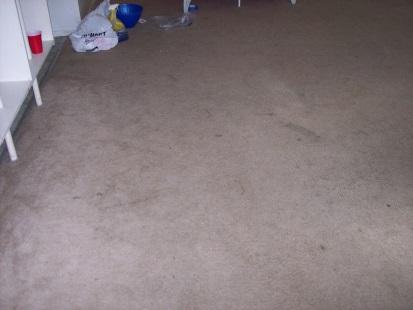 worn-carpet