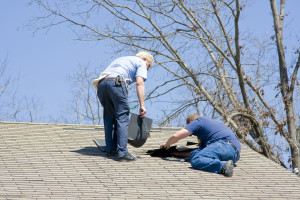 Spring cleanup and yard Maintenance