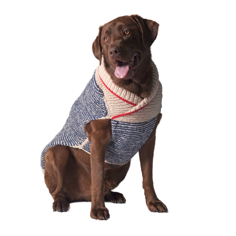 dog-sweater-1