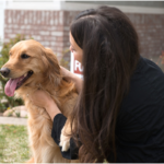 Landlords: Reasonable Pet Restrictions for Your Rental Property
