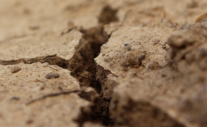 Crack in soil