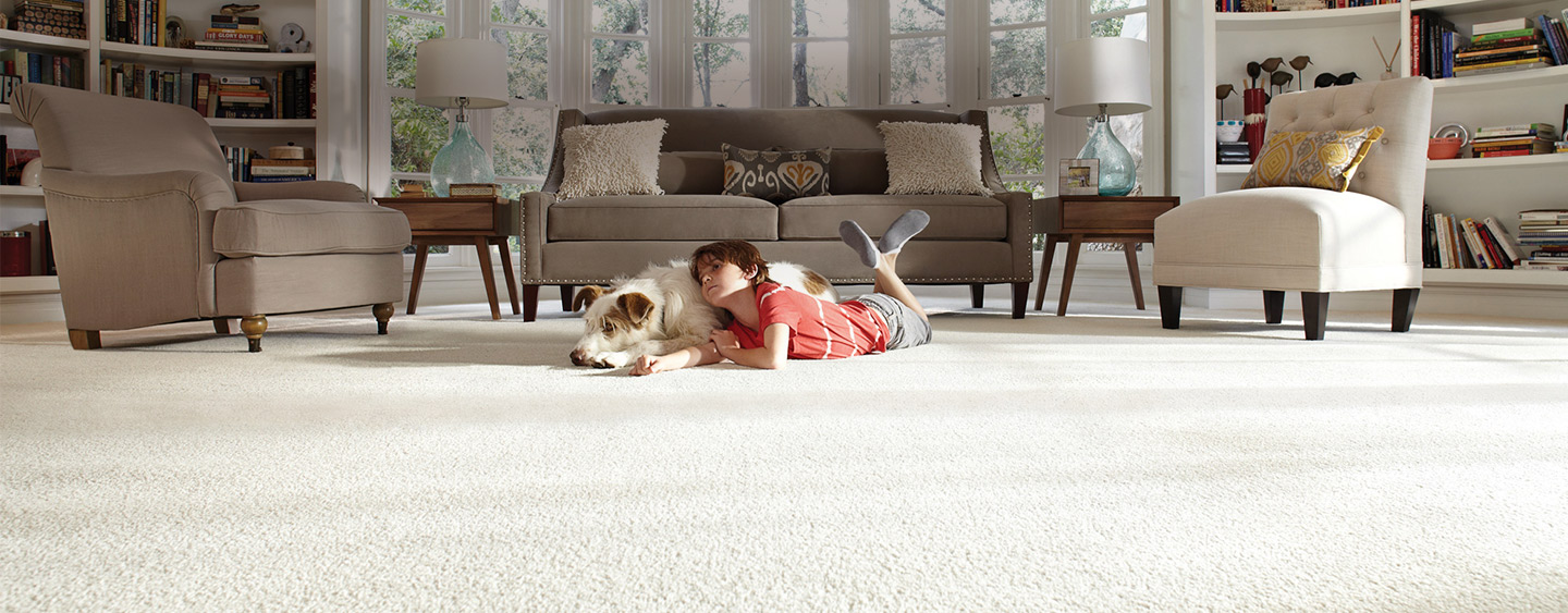 Young Child and a Cute Dog Laying on Fresh, Clean Carpet