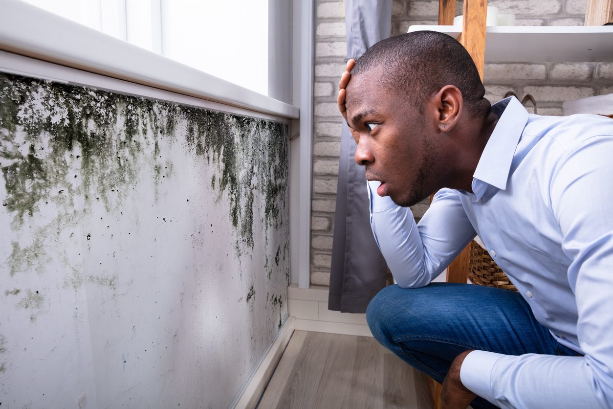 Winston-Salem Tenant Looking at Mold in His Rental Home