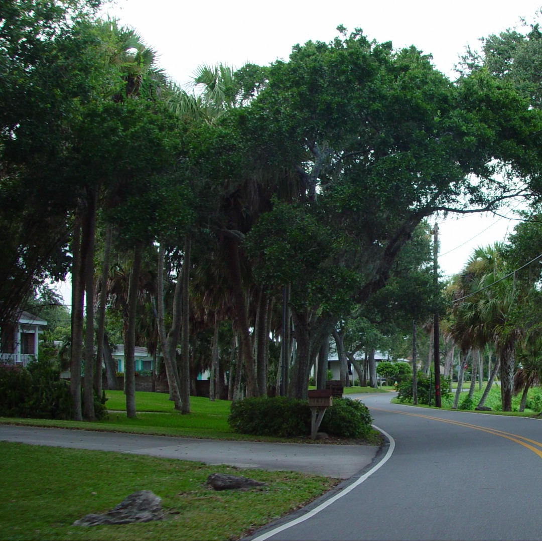 Residential Road in Rockledge FL