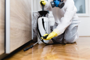 Exterminator Hard at Work in a Frederick Park Rental Home