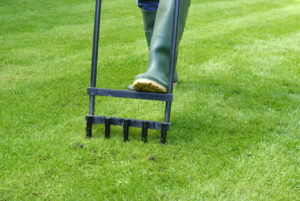 Manually Aerating the Lawn at a Rental Home in Mystic