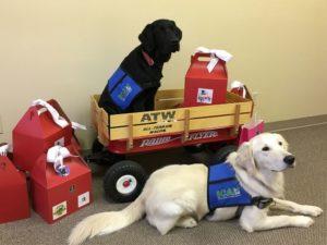 Service Dogs and Rental Property in Omaha Nebraska
