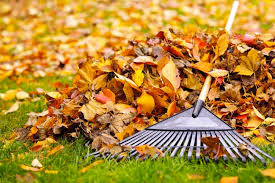 fall lawn preparedness