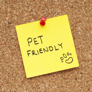 Pet Friendly written on a yellow paper pinned on a cork noticeboard