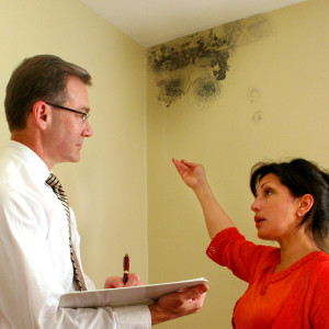 Resident Pointing Out a Mold Problem to the Landlord