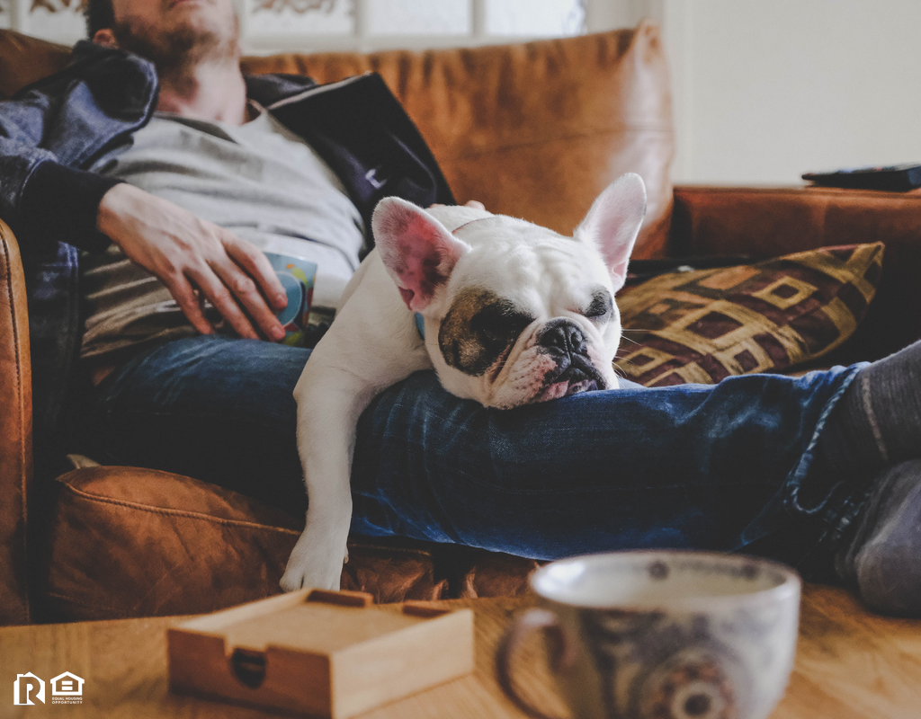 Buhl Man with French Bulldog in His Lap