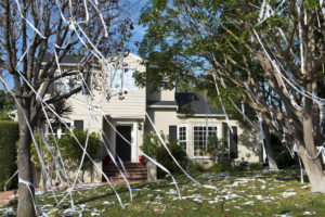 Haskell Rental Property with Toilet Paper in the Trees
