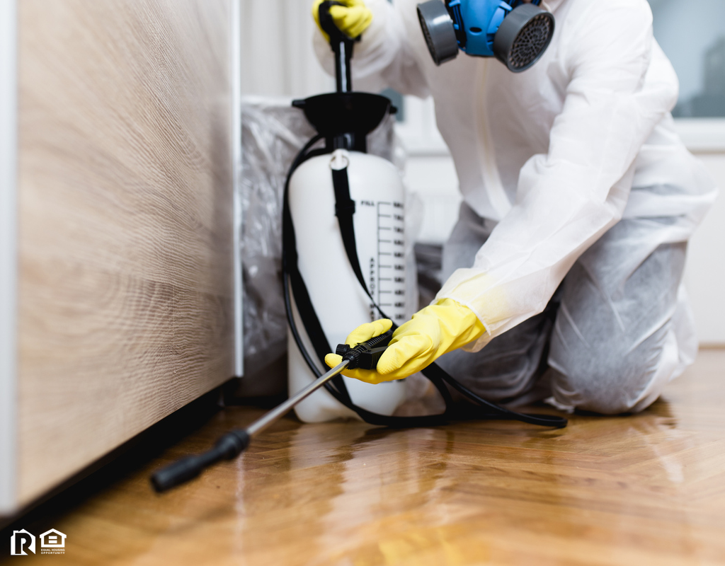 Exterminator Hard at Work in a Newport Rental Home