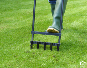 Manually Aerating the Lawn at a Rental Home in Hunters Creek