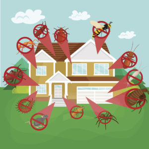 Keeping Your Spring Rental Property Pest Free