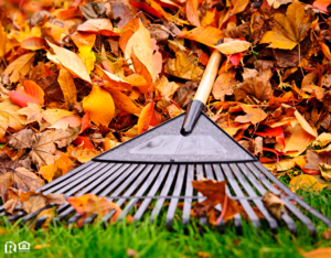 A Rake Resting on a Pile of Colorful Autumn Leaves