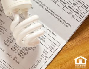 Lightbulb Sitting on an Electric Bill For a Shelby Carter Township Rental Home