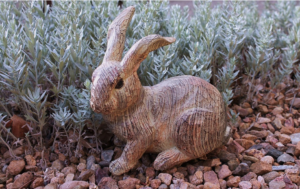 Adorable Wooden Bunny Rabbit Sitting Along the Edges of a Xeriscaped Yard in Willow Creek