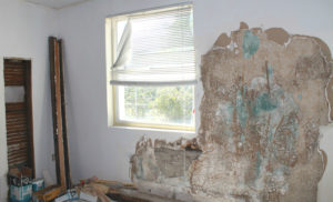 Mountain House Rental Property Being Restored After Mold Remediation Services