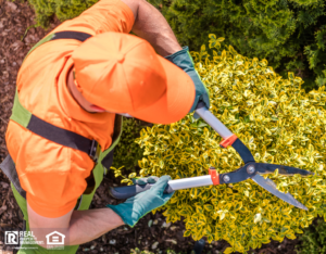 Aerial Shot of Professional Landscaper Shaping Plants