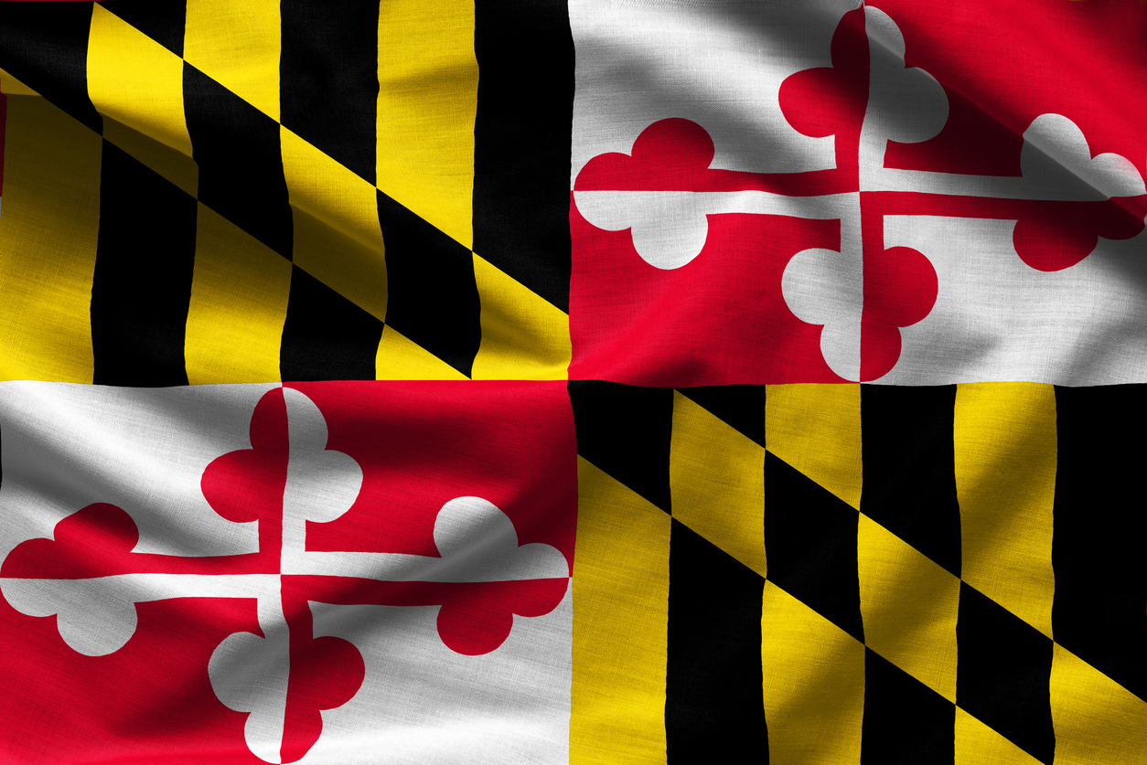 Fabric texture of the Maryland Flag