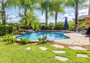 Beautiful Swimming Pool and Back Yard