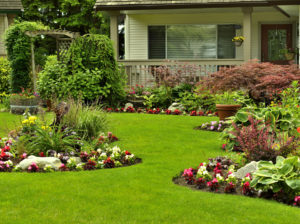 Houston Heights Rental Property with Perfectly Maintained Yard with Flower Beds