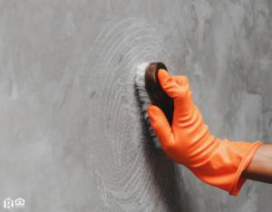 Scrubbing a Wall in a Eado Rental Property
