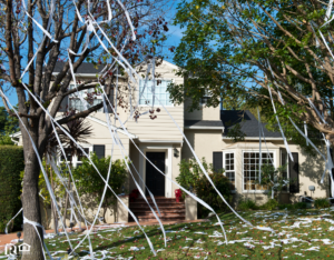 Houston Rental Property with Toilet Paper in the Trees