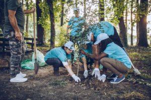Chandler Volunteers Planting Trees