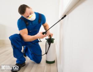 Exterminator Spraying Apartment for Pests
