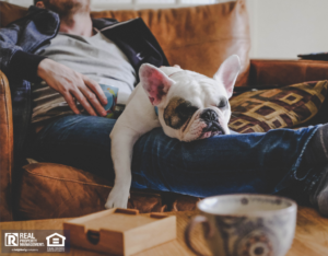 Lewisville Tenant Spending a Lazy Afternoon with Their Dog