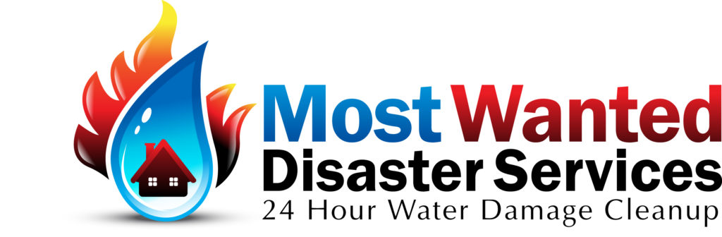 Most Wanted Disaster Services