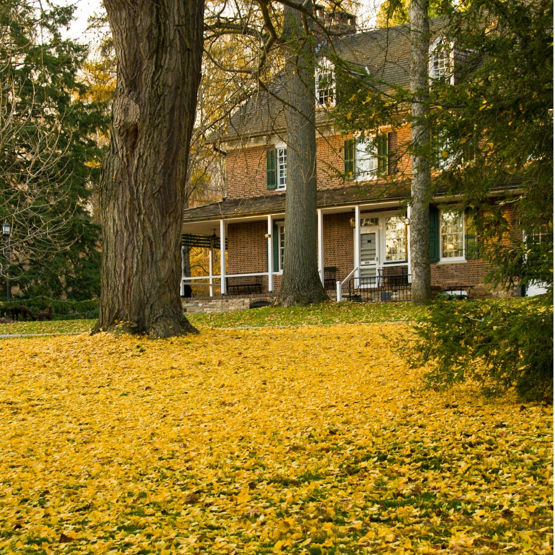 Large home in Pennsylvania surrounded by fall foliage