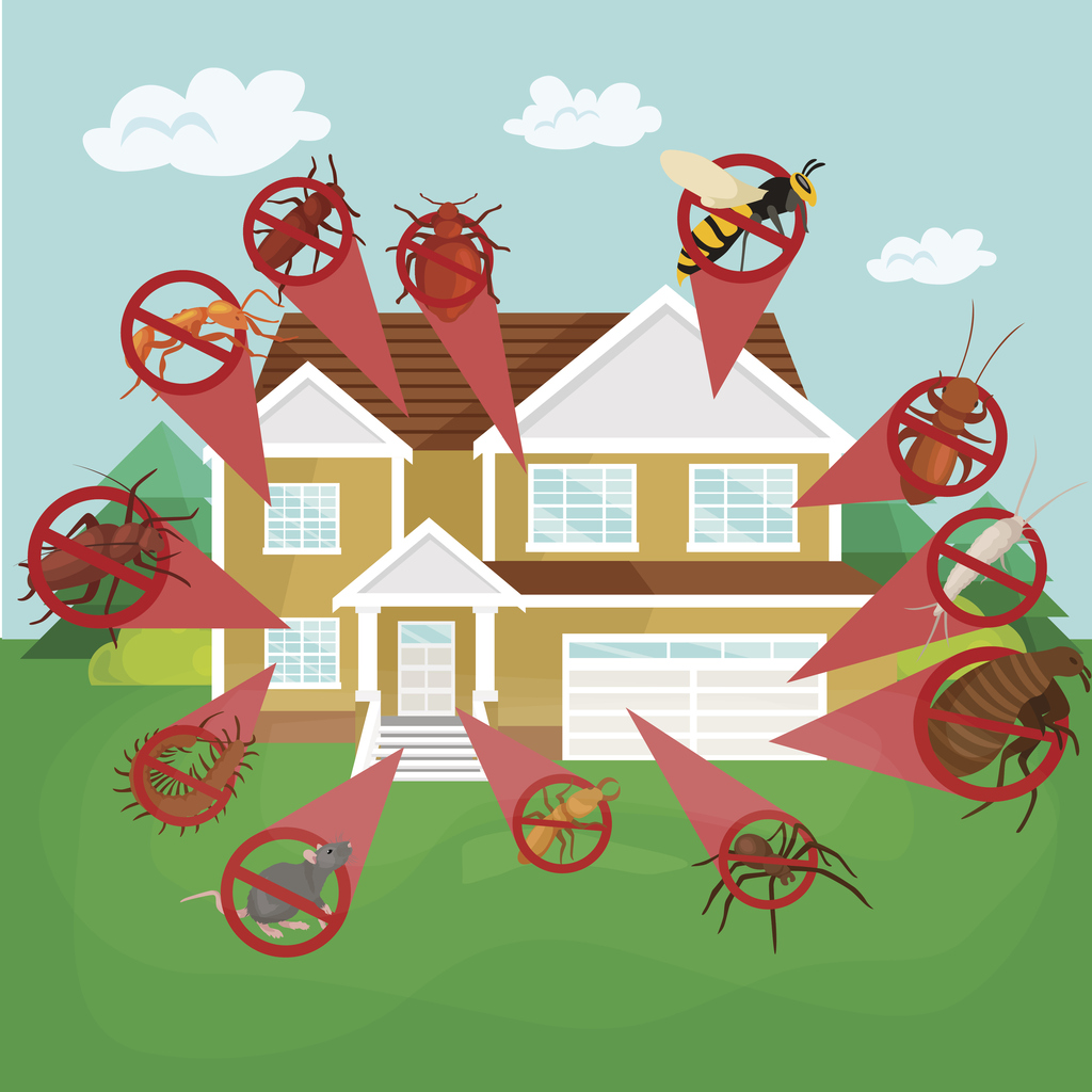 Keeping Your Woodstock Rental Property Pest Free