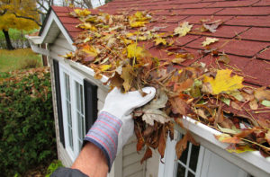 some one cleaning leaves from a roof top gutter