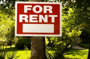 For Rent Sign Attached to Tree in Yard