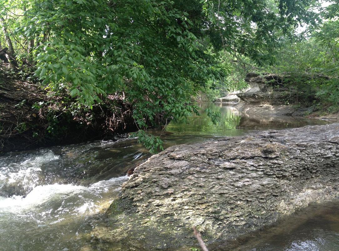 Gilleland Creek in Pflugerville TX