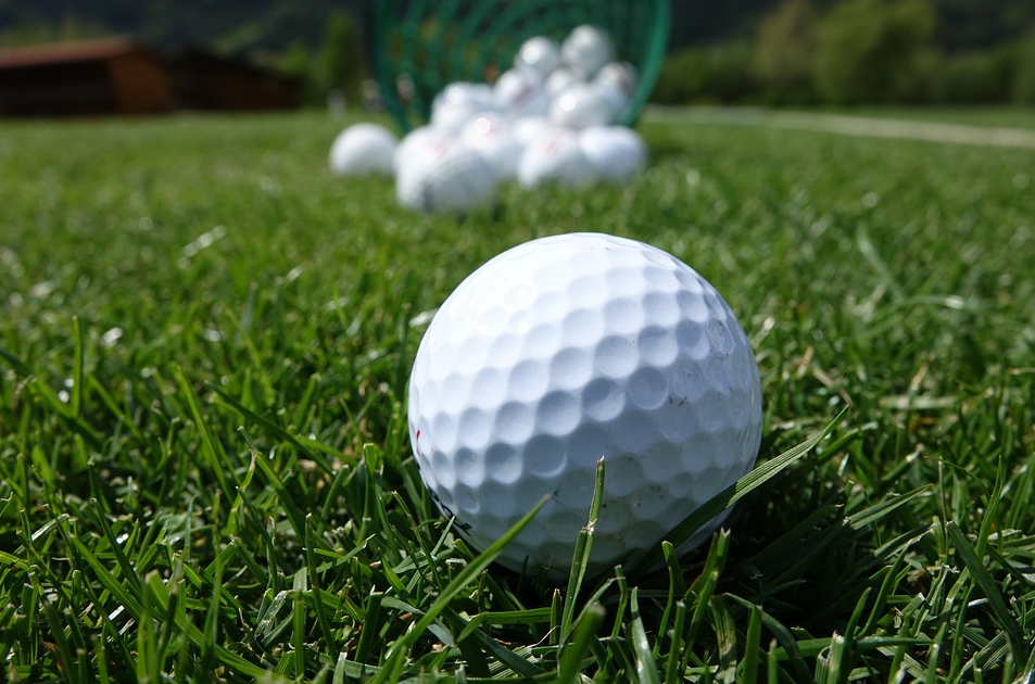 Close Up Shot of a Golf Ball in the Grass