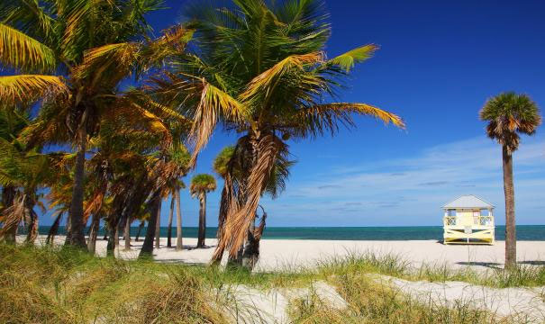 crandon-beach-miami