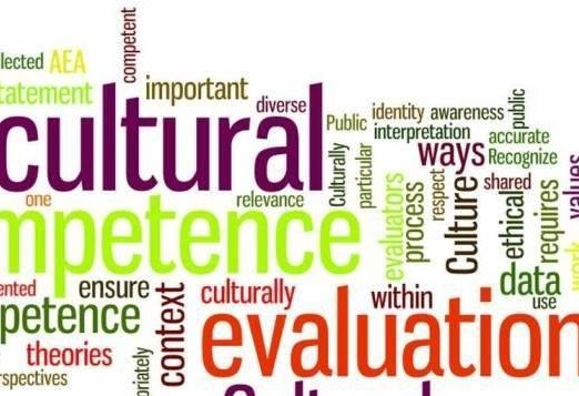 RocIDEA Connection: Cultural Competency