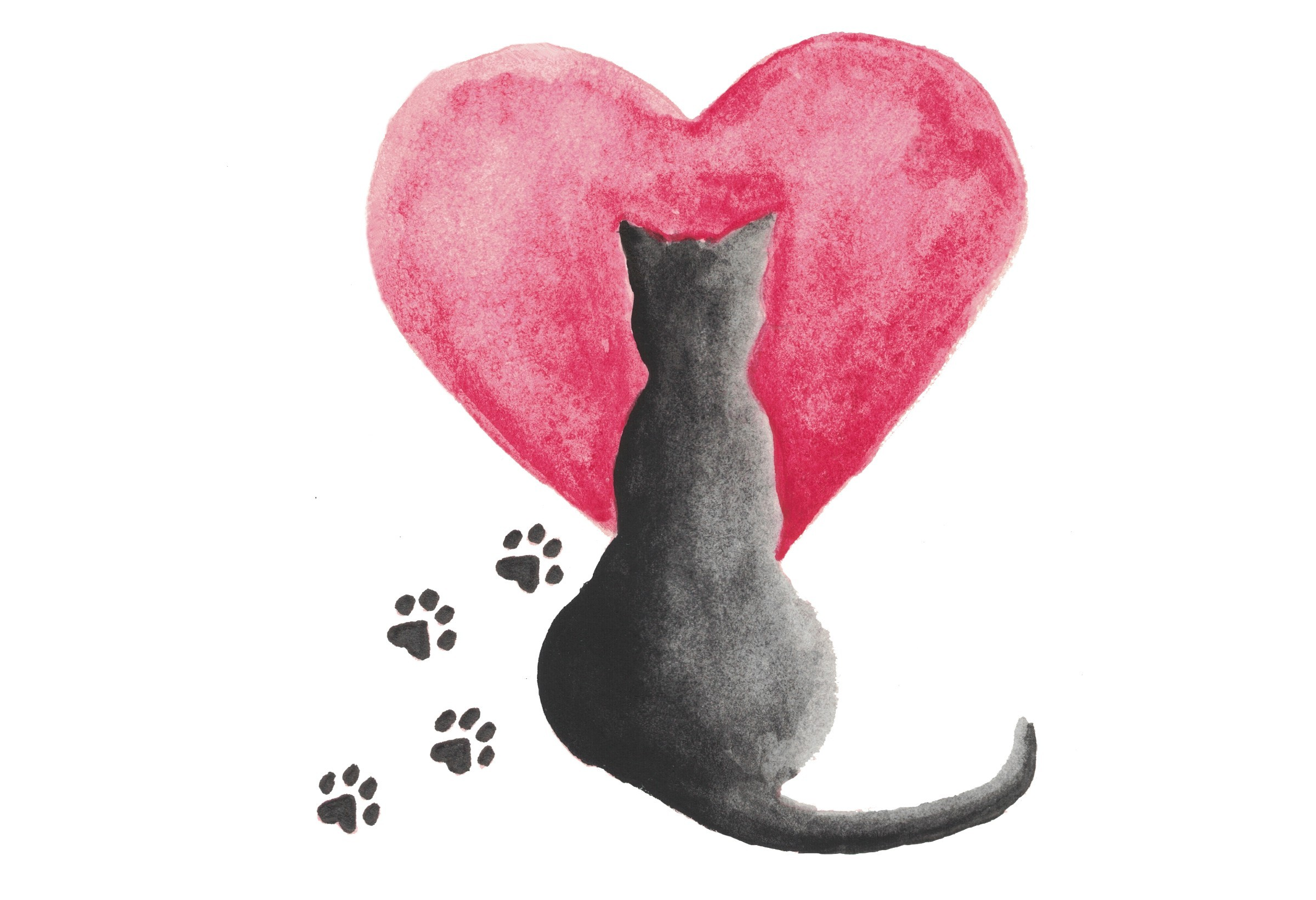 Paws and Love Kitten Shower