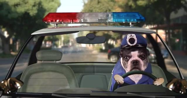 Fourth of July (Smiling Dog) Officer Biskuts