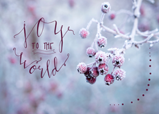 Joy and Berries