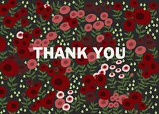 Rose Garden Thanks