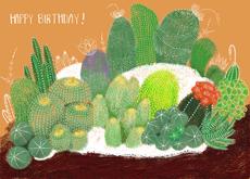 Birthday Cactus