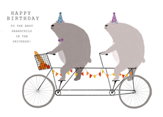 Bears on a Bicycle